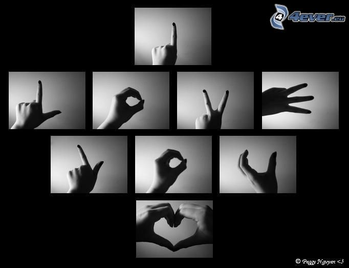 fingrar, kärlek