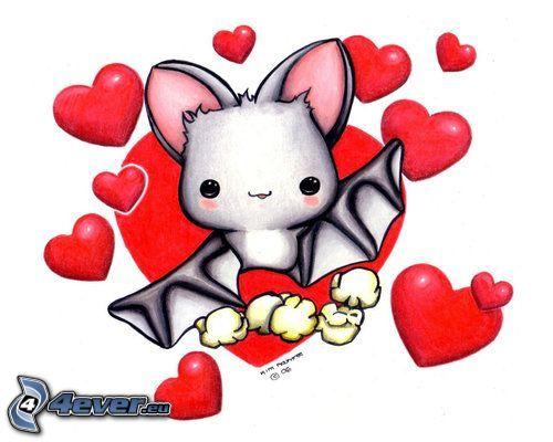 fladdermus, hjärtan