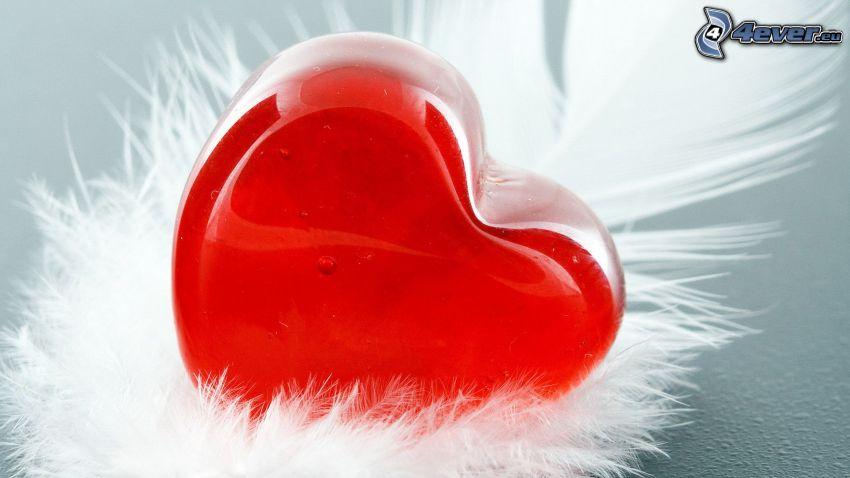 hjärta, fjäder