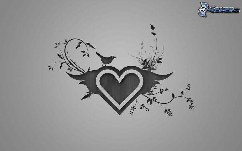 hjärta, växter