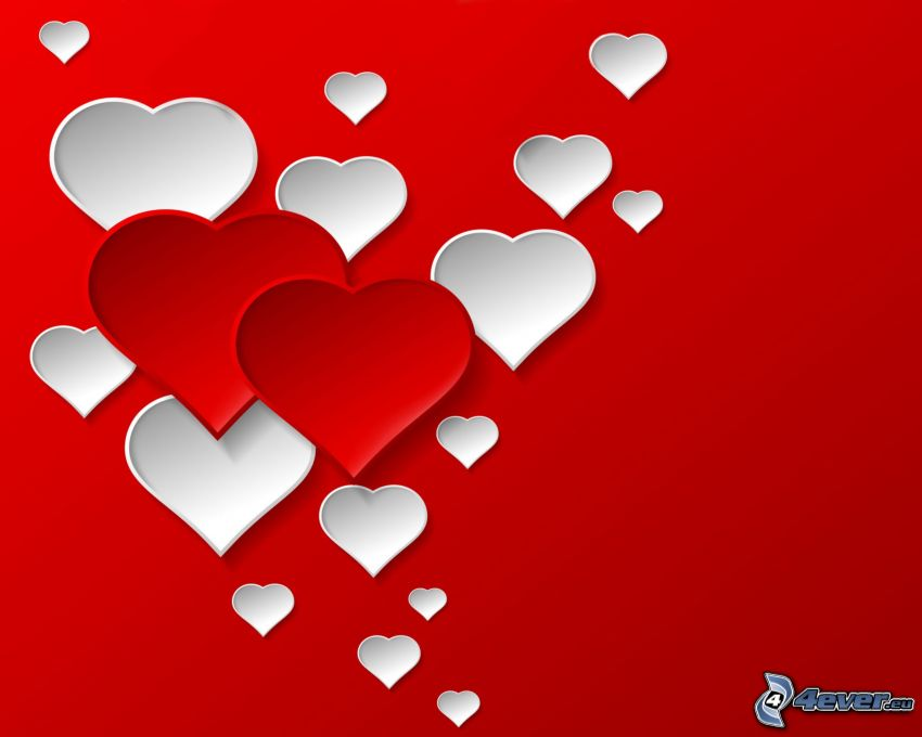hjärtan, röd bakgrund