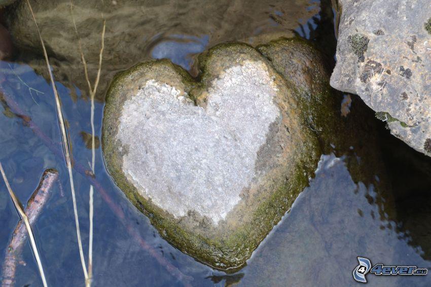 stenhjärta, vatten