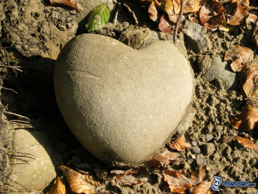 stenhjärta