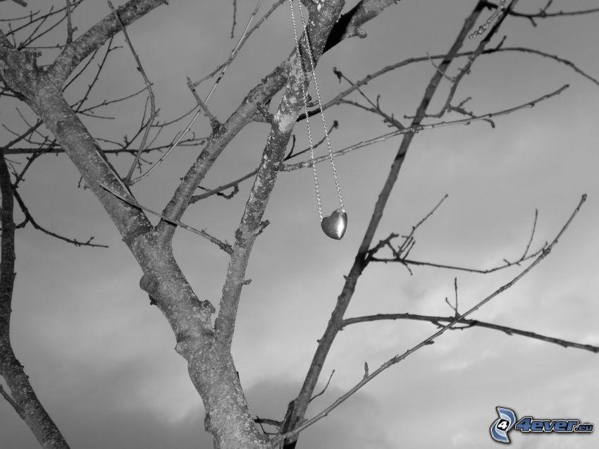 träd, hängsmycke, hjärta, halsband, svartvitt foto