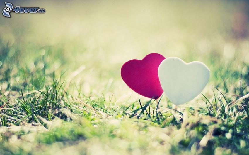 två hjärtan, gräs