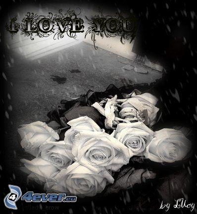 Jag älskar dig, rosor