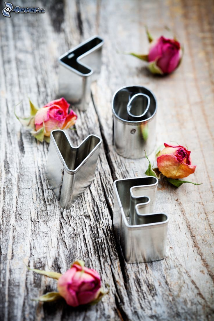 love, rosor