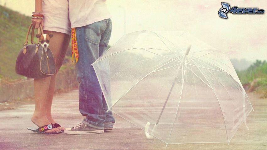par med paraply
