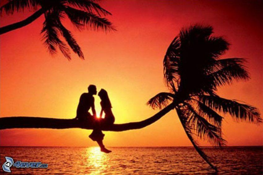 par vid solnedgång, palmträd över hav, silhuett av ett par, orange solnedgång över havet