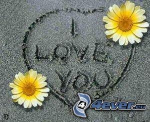 I love you, Jag älskar dig, hjärta i sand, blommor