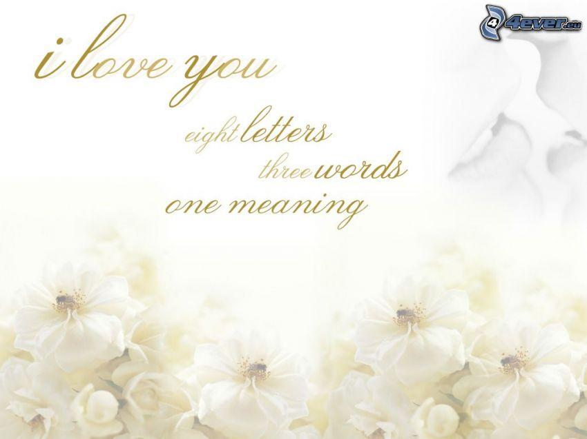 Jag älskar dig, 8 bokstäver, 3 ord, en mening