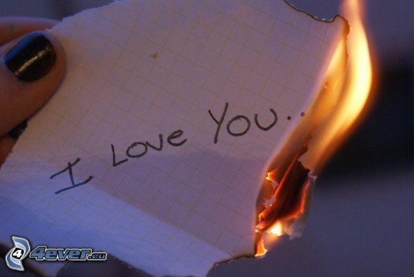 Jag älskar dig, eld, kärlek