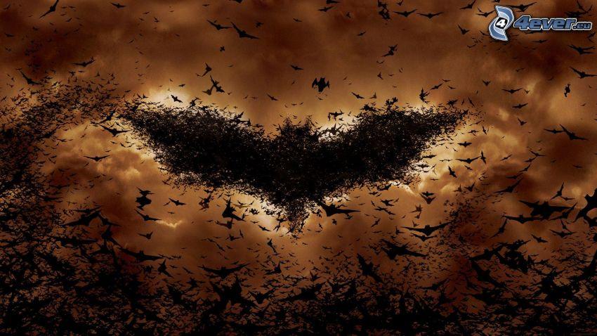 Batman, fågelflock