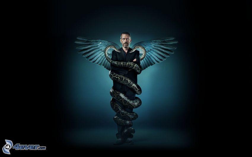 Dr. House, vingar