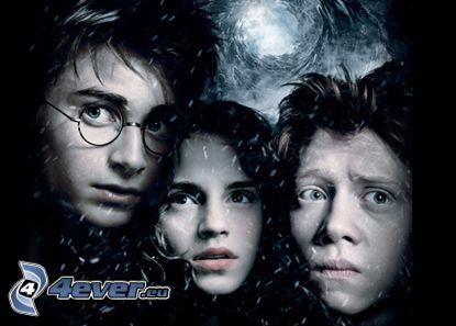Harry, Hermione och Ron, Harry Potter