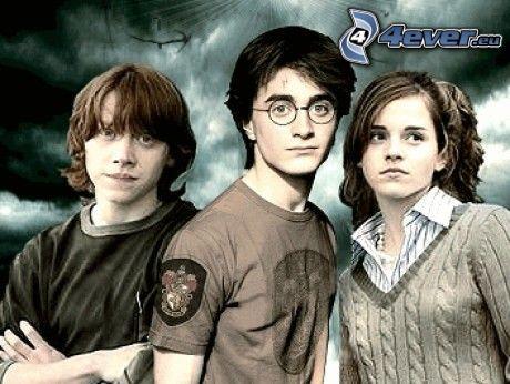 Harry, Hermione och Ron, Harry Potter