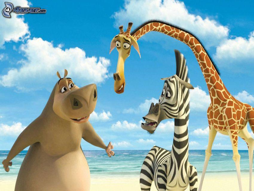 Madagaskar, flodhäst, zebran från Madagaskar, giraffen från Madagaskar