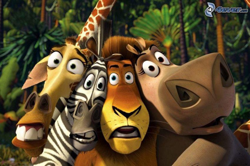 Madagaskar, giraffen från Madagaskar, zebran från Madagaskar, lejon, flodhäst