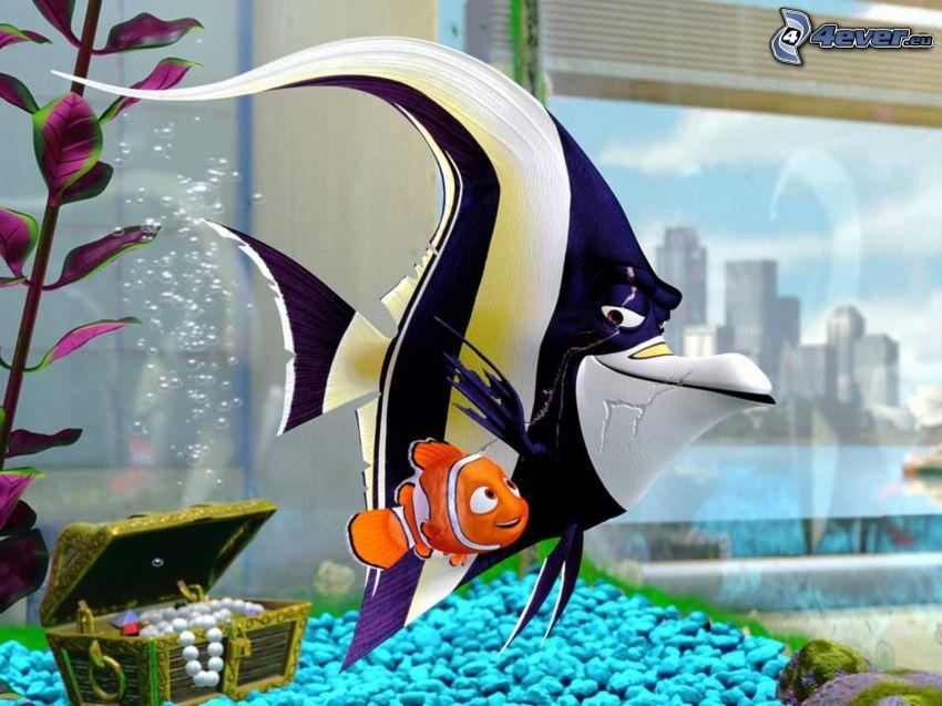 Nemo, akvarium