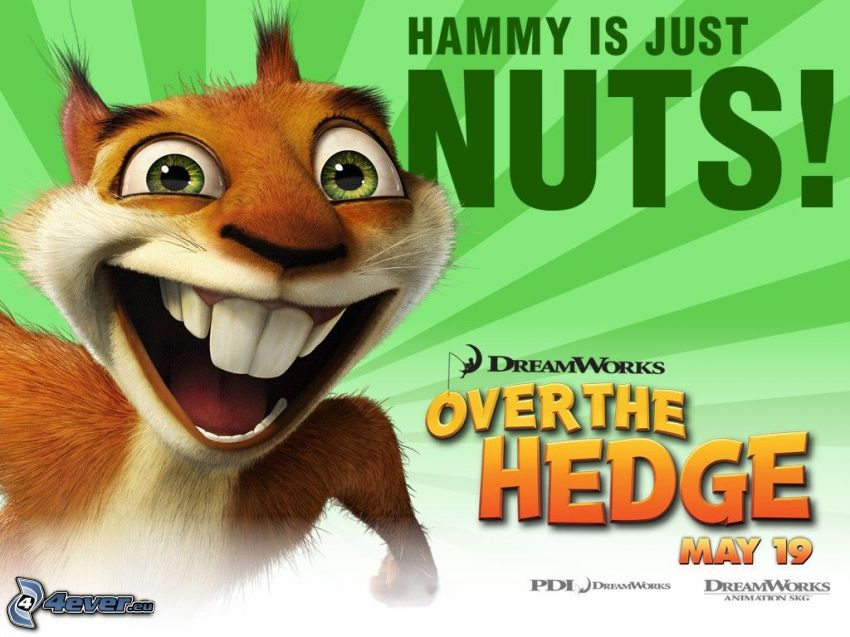 Over the Hedge, Hammy