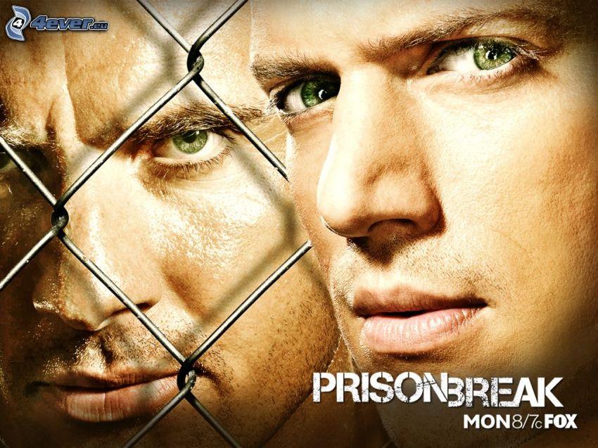 Prison Break, Wentworth Miller, TV-serie