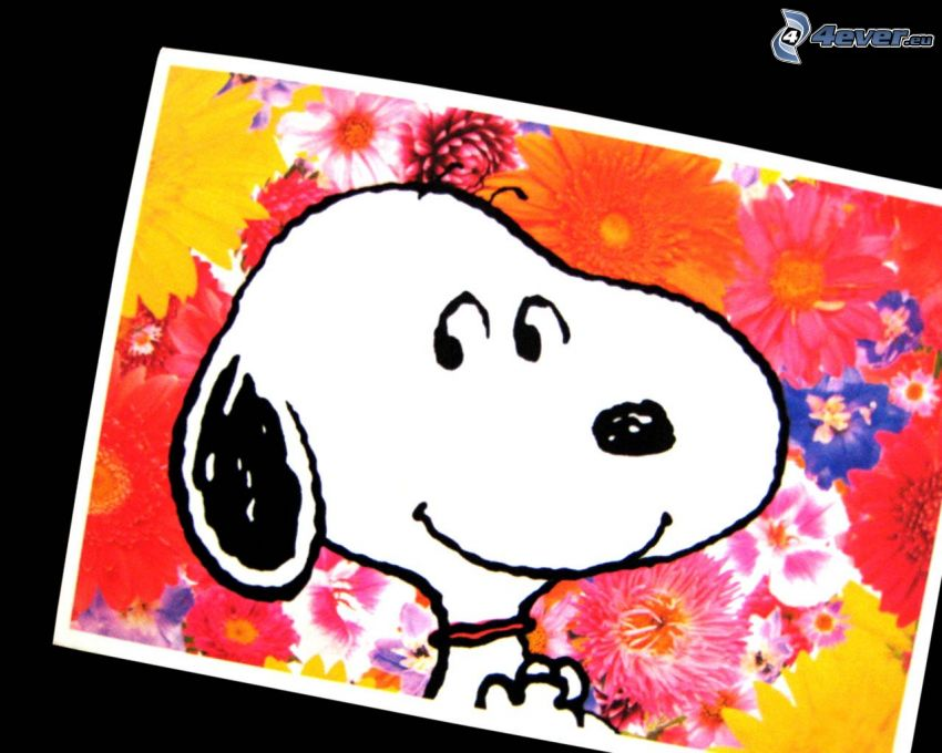 Snoopy, tecknad hund, färgglada blommor