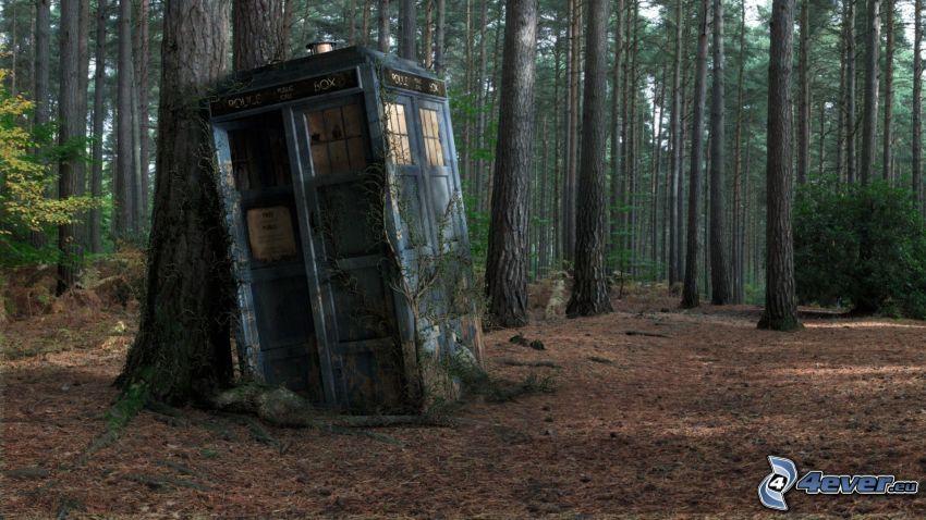 telefonhytt, skog