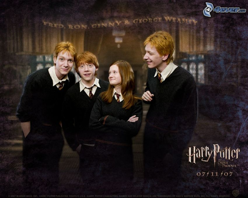 Weasley, Harry Potter