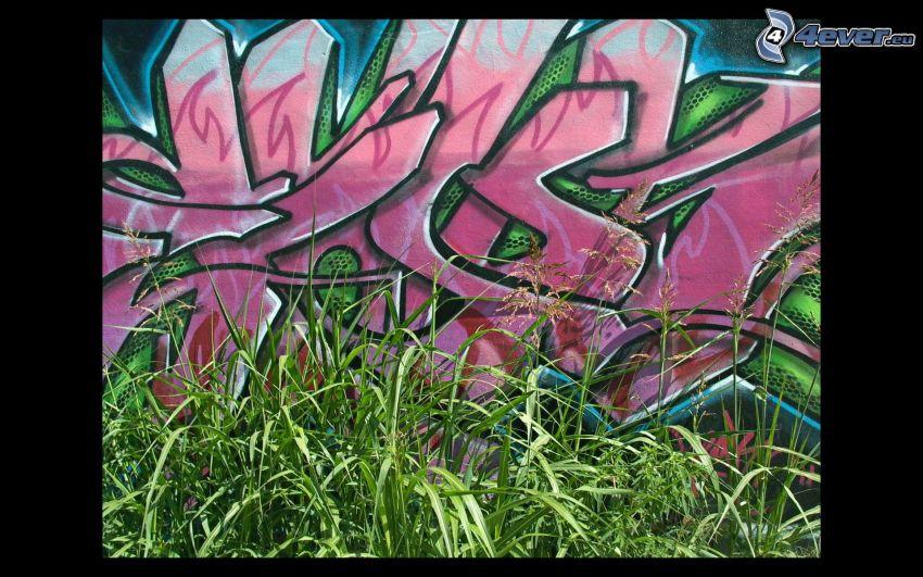 graffiti, gräs