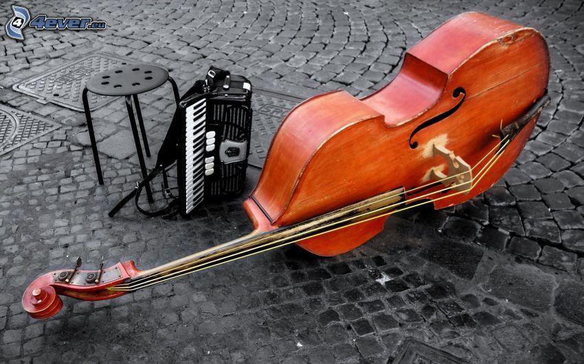 cello, dragspel