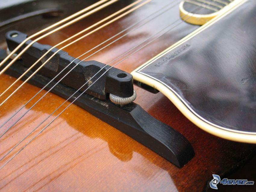 fiol, strängar