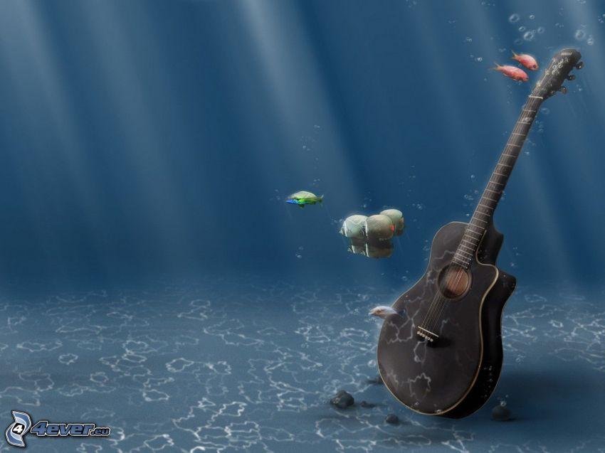 gitarr, hav, fiskar