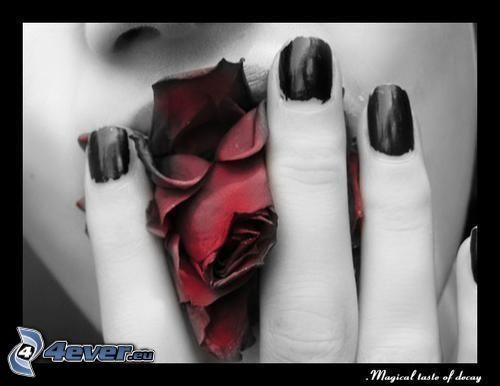 nagel, kyss, ros, läppar, beröring
