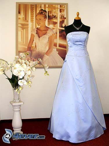 brudklänning, vit, bild, Orchidé