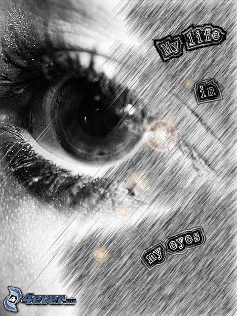 My life in my eyes, öga, text