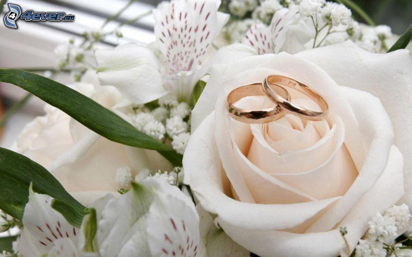 vigselringar, vit ros, liljor