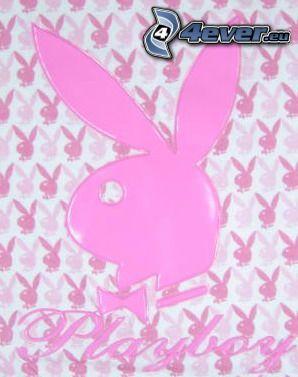 Playboy, logo