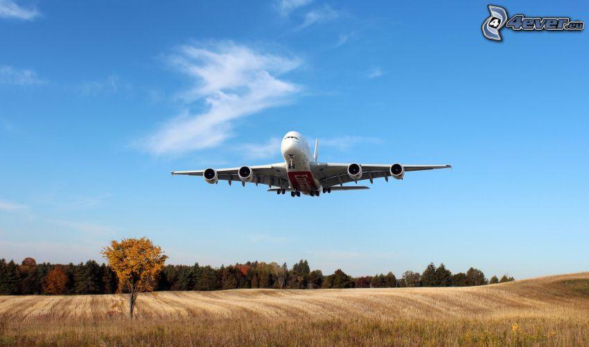 Airbus A380, åker