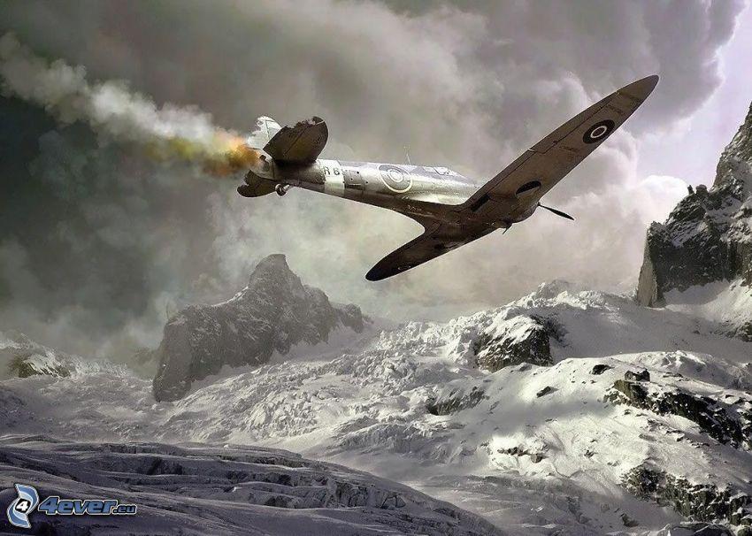 flygplan, snöklädda berg