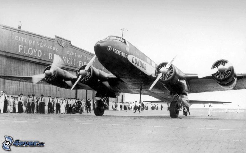 Focke-Wulf Fw 200, propeller, flygplan, flygplats, gammalt foto