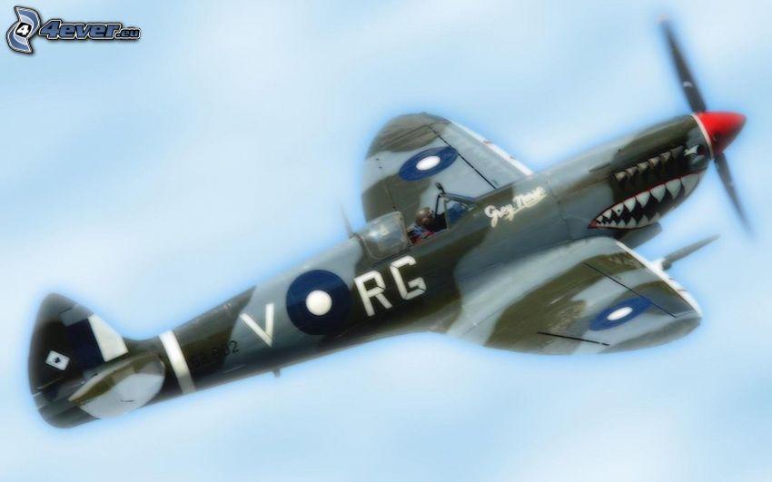 Supermarine Spitfire, haj