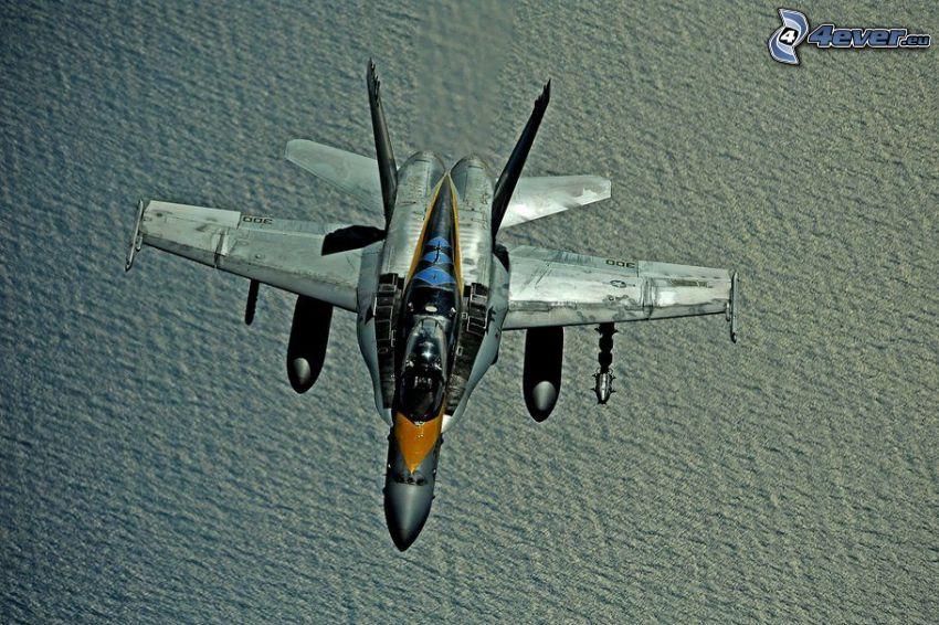 F/A-18E Super Hornet, hav