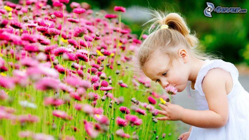 flicka, rosa blommor