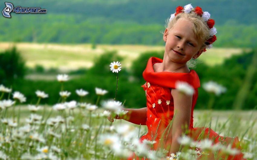 flicka i blommor, äng, prästkragar