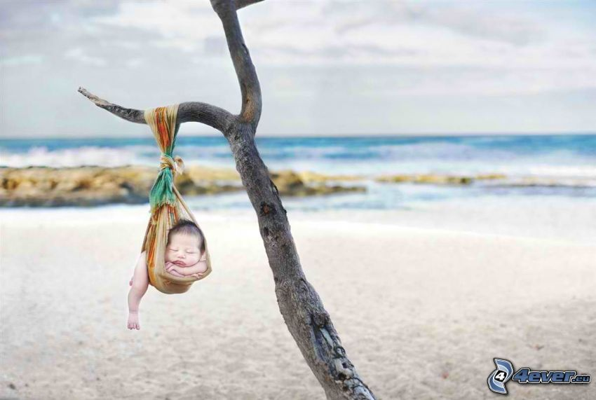 sovande barn, barn på strand, uttorkade träd, halsduk