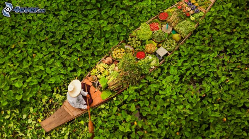båt, kines, grönsaker, alger