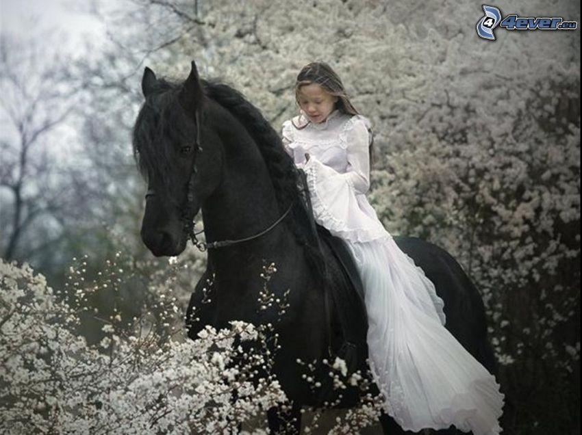flicka till häst, svart häst, utblommat träd