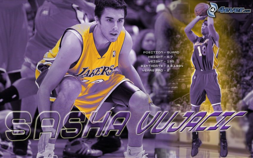 Sasha Vujacic, LA Lakers, NBA, basketbollsspelare, basket, sport, man, kille