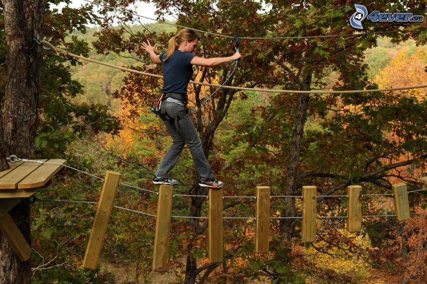klättercentrum, kvinna, träd