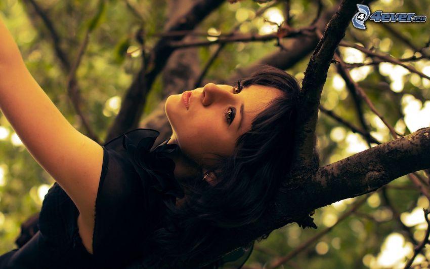 brunett, träd